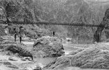 Kaibab Bridge, 1932, Arizona--Grand Canyon--Trails--Kaibab Trail--Suspension Bridge...
